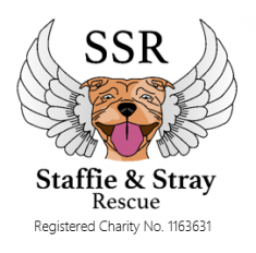 Staffie & Stray Rescue car wash raises £204!